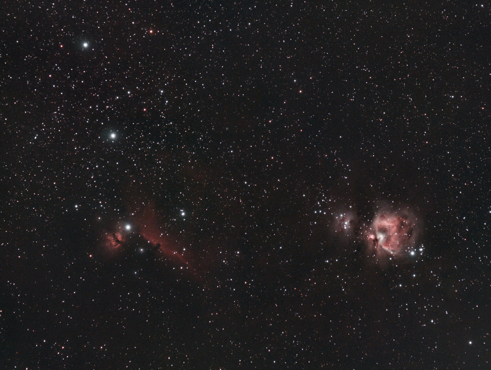 Orion_Nebula_Widefield_Canon650D_Samyang_100mm.png